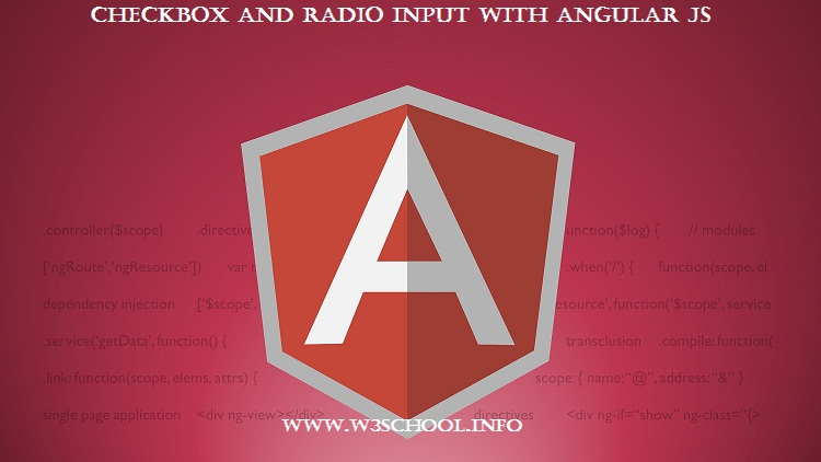 checkbox and radiobox usage in angular js form